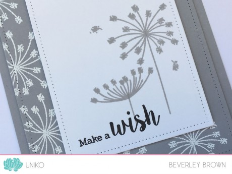 IntroOrganicWishes3a