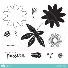 PassifloraPP